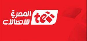 فاتوره التليفون شهر يناير من موقع المصريه للاتصالات