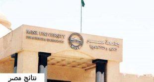 رقم جامعة مصر للعلوم والتكنولوجيا